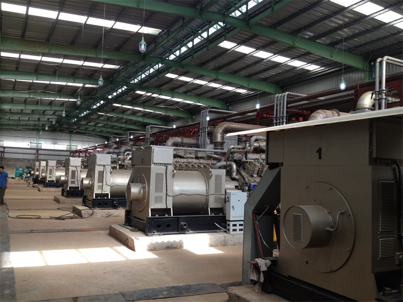 尼日利亚饮料厂自备电站
